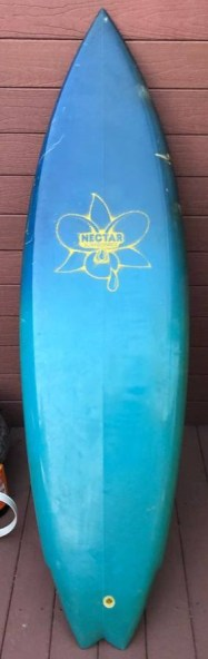 Nectar Surfboards Twin Fin 1