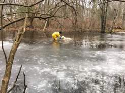 The Shrewsbury Fire Department rescued a dog that was stuck in the mud of a pond on Wednesday. (Courtesy of Shrewsbury Fire)