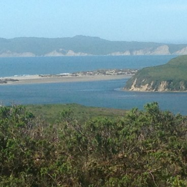 Pt. Reyes from Muddy Hollow and Estero Trails