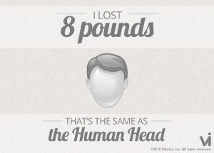 8 lbs human head