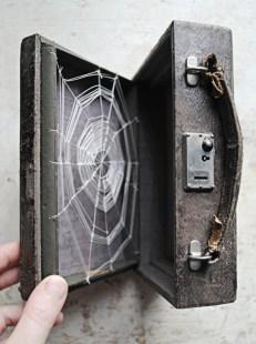 cobweb-in-a-case