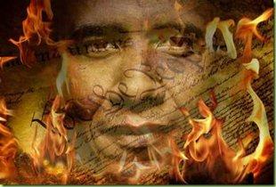 constitution-burns