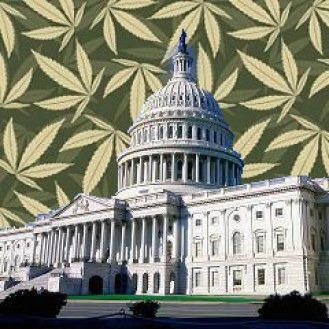 marijuana-DC