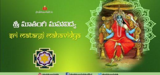 Dasa Mahavidya Sadhana Vidhi - ShubhAurLabh