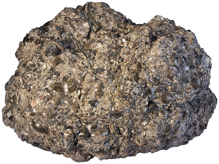 Rock -6