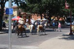There were multiple groups traveling around on their horses. / Photo by Parker Conley