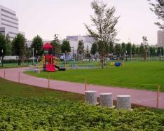 横浜駅周辺 公園 子供 おすすめ