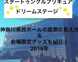 スタートゥインクルプリキュア・ドリームステージ 神奈川県民ホール