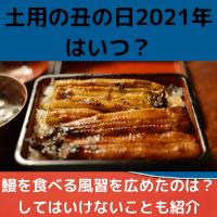 土用の丑の日・2021年はいつ?鰻を食べる風習を広めたのは?してはいけないことも紹介 |