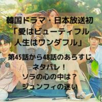 韓国ドラマ・日本放送 愛はビューティフル人生はワンダフル 第44話 48話 あらすじ ネタバレ