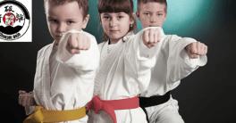 cursuri arte martiale copii