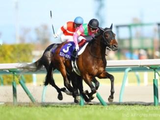 19高松宮記念4
