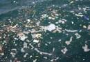 海洋危機(一):塑膠是有毒的定時炸彈
