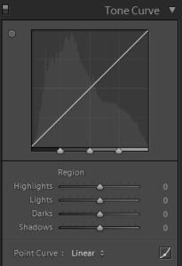Lightroom Develop Tone Curve Panel