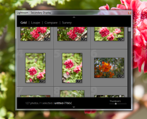 Lightroom-Library-Secondary-Monitor