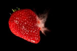 Strawberry-06541
