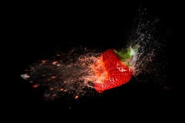 Strawberry-06542