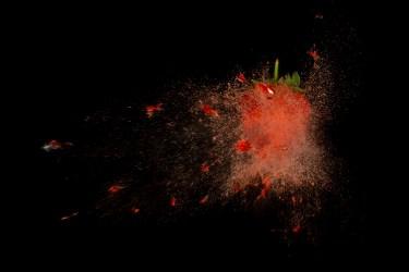 Strawberry-06549