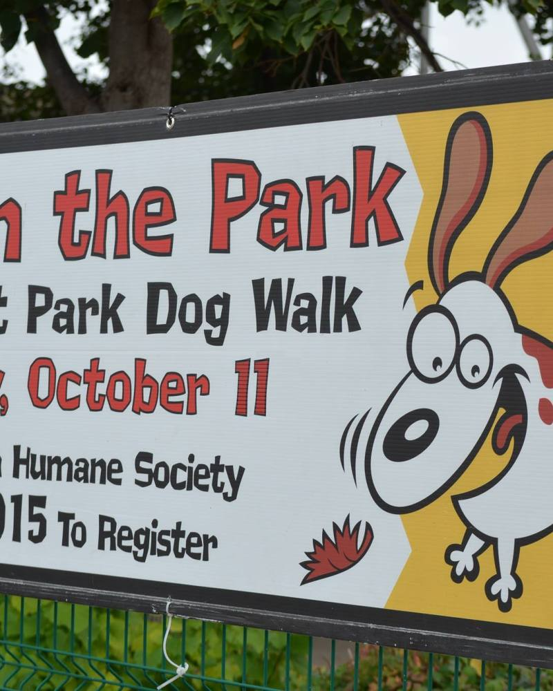 Bark in the Park '15 Photographer and Exhibitor