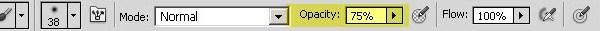 Opacity slider in photoshop