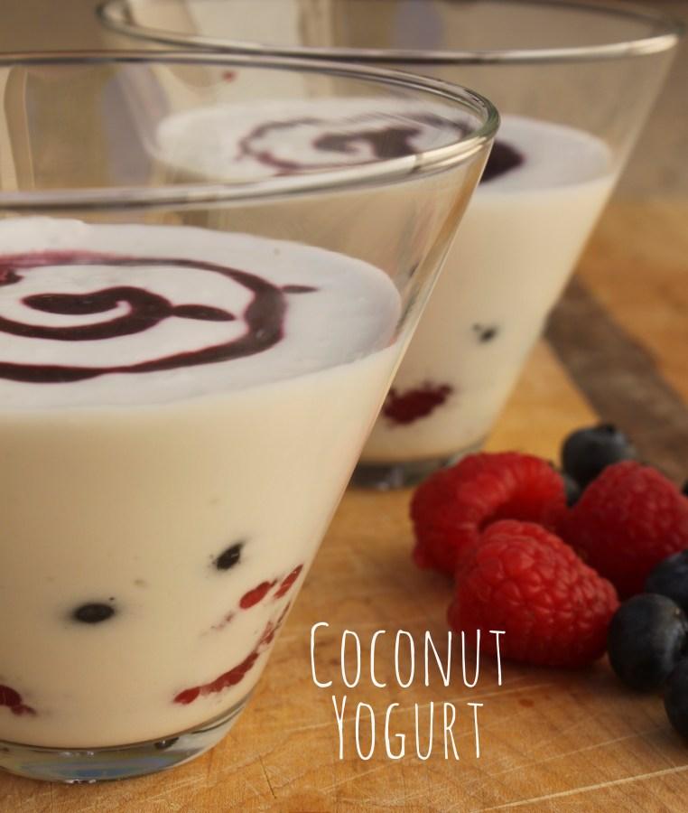 coconut yogurt4