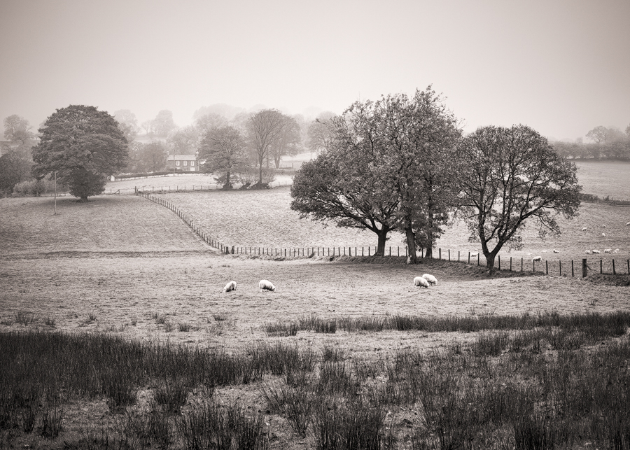 Brecon Beacons agriculture land