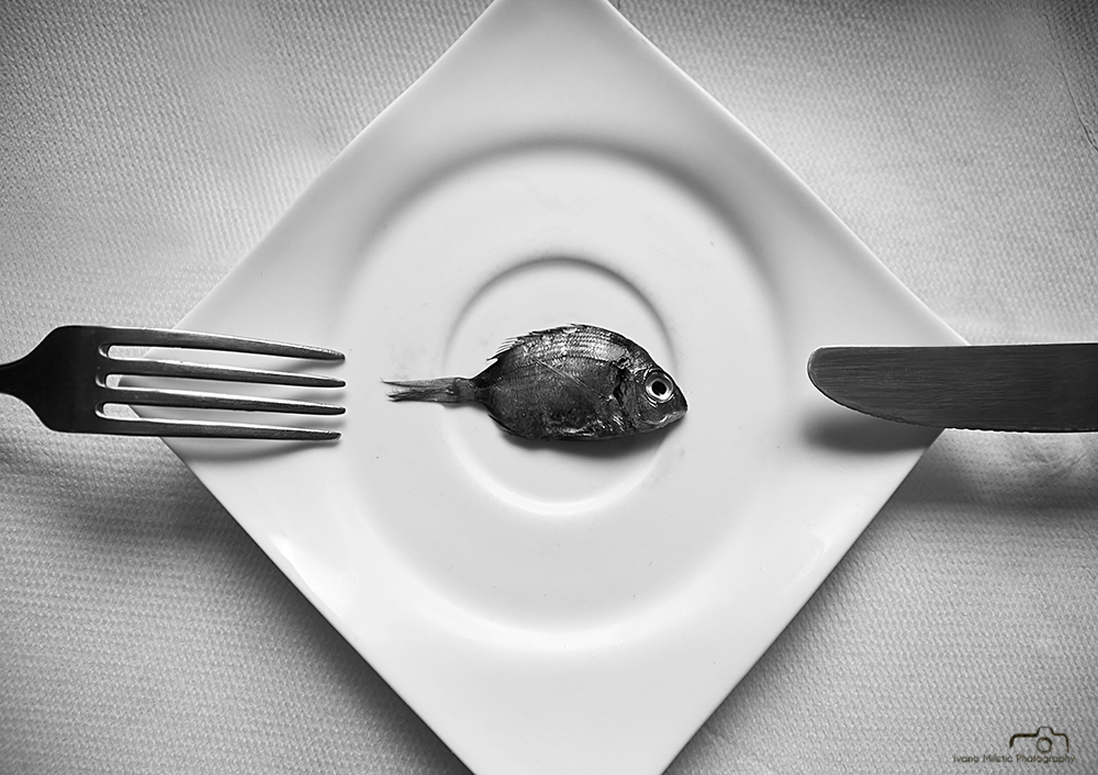 Modest Lunch by Ivana Miletic
