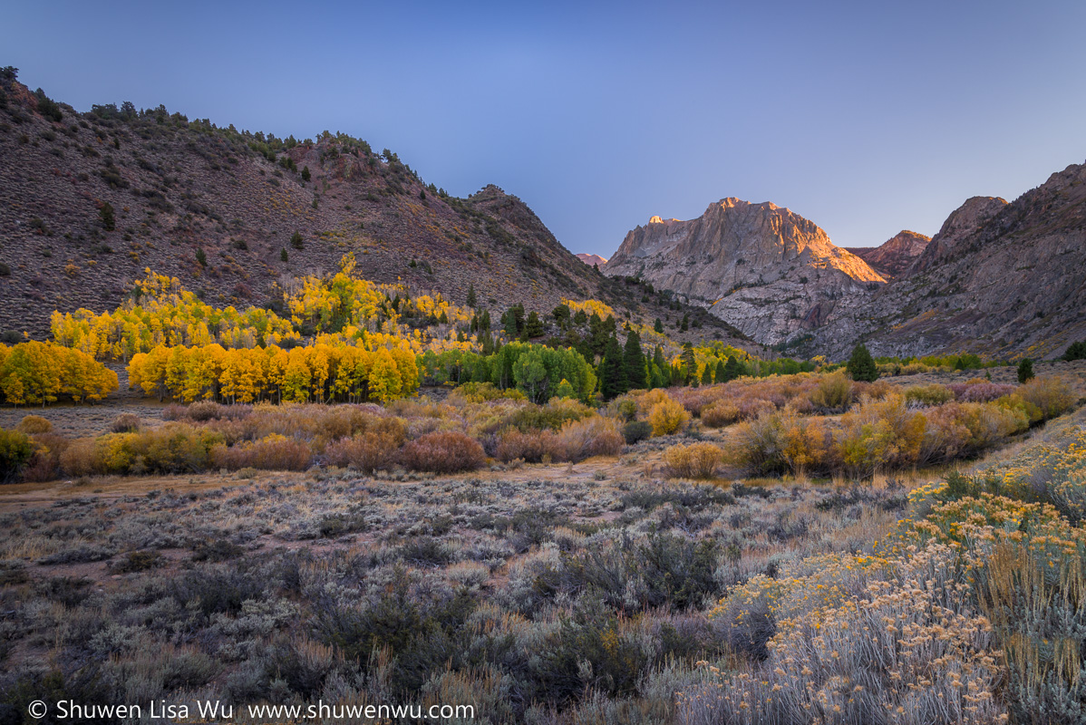 Last Light & Fall Colors, June Lake Loop