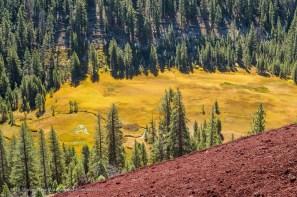Crater Meadow below Red Cones, Mammoth Lakes, California, September 2016.
