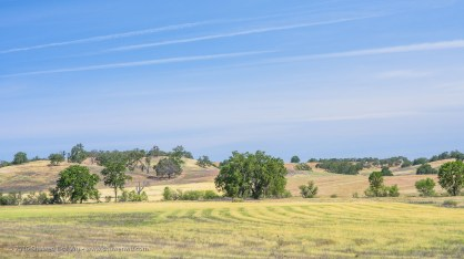 Patterns and lines in the sky and the meadows alike, along Interlake Road near Paso Robles, California, April 2016.