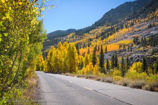 Fall Colors along South Lake Road, Bishop, California, September 2016.