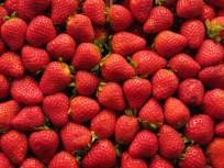 תותים, שוק לה בוקריה, ברצלונה