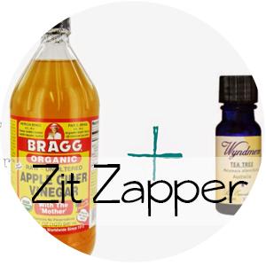 DIY Zit Zapper || Shwin&Shwin