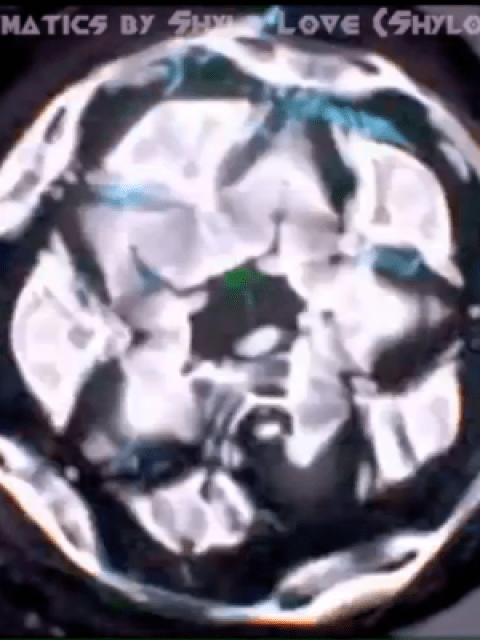 Screen-shot-2014-09-04-at-5.03.29-PM-480x640