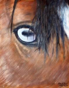 Eyeofargo