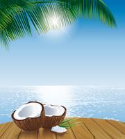 Cold Pressed Coconut Oil (Virgin Coconut Oil)