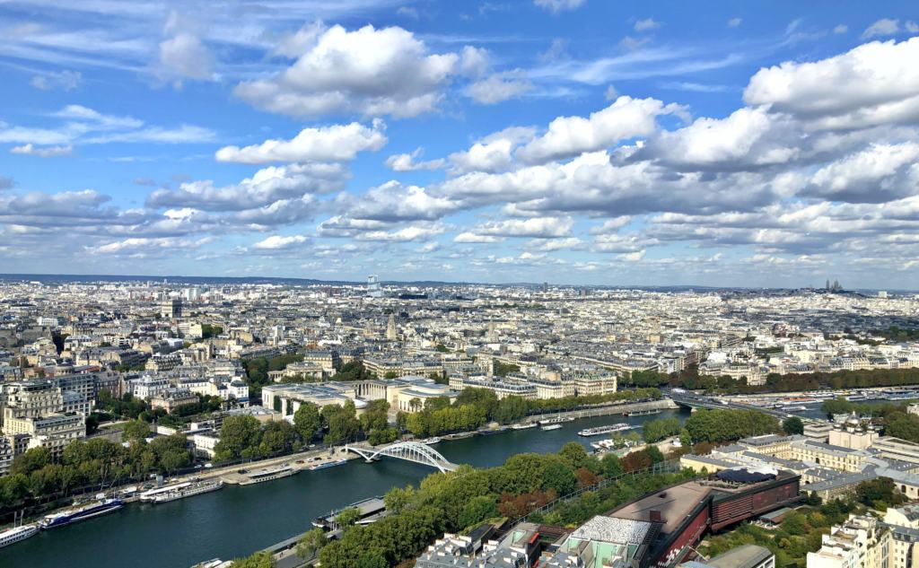 View of the river and buildings from the top of the eiffel tower