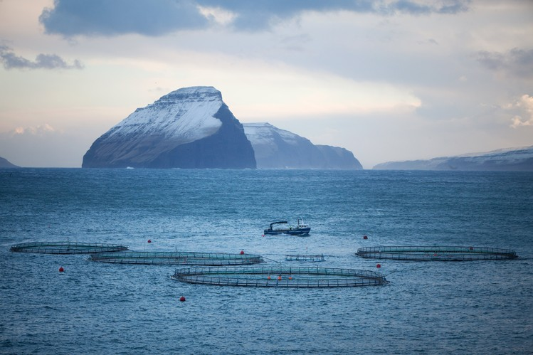 A salmon farm and support ship off the coast of off the coast of the island of Vágar in the Faeroe Islands.