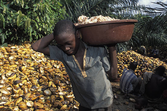 Image result for child slavery in cocoa industry