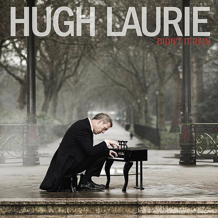 El álbum de Laurie de 2013 'Didn't It Rain'.