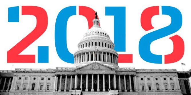 Image result for Mid-term Election