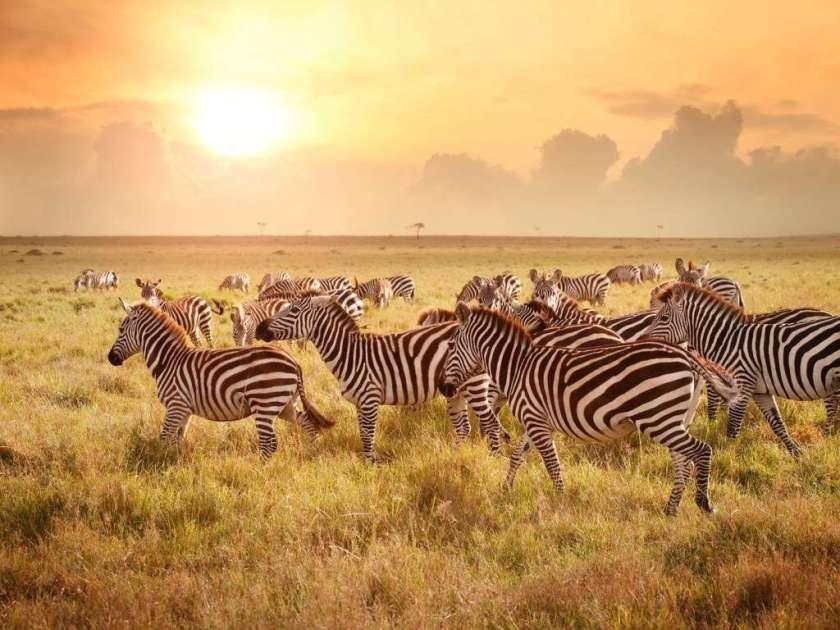 كينيا - الدول الأجمل في العالم