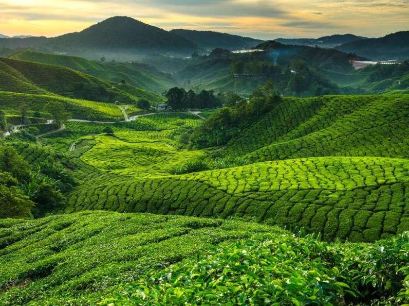 ماليزيا - من اجمل دول العالم السياحية