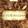 Gerösteter Frühjahrs-Bancha aus Kyoto, Japan