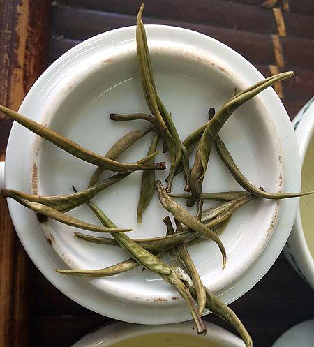 Ancient Snow Shan White Silver Needle Tee: nasse Teeknospen