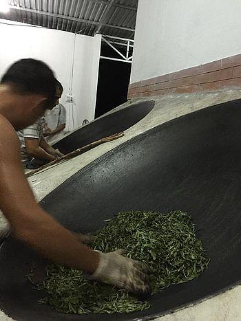 Schritt 3: Rösten der Teeblätter für Tra Pai Hao Schwarzer Tee