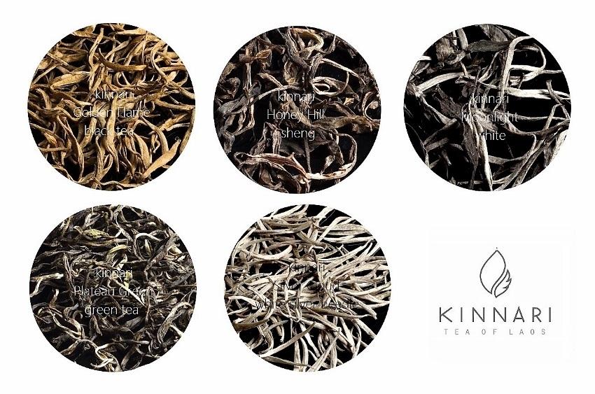 Kinnari Tees Collage