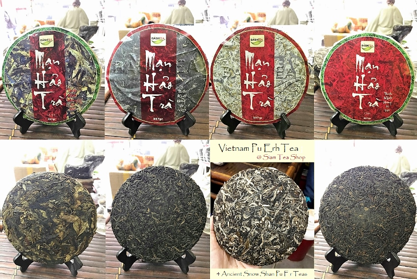 4 x Ancient Snow Shan Pu Erh Tee - Collage