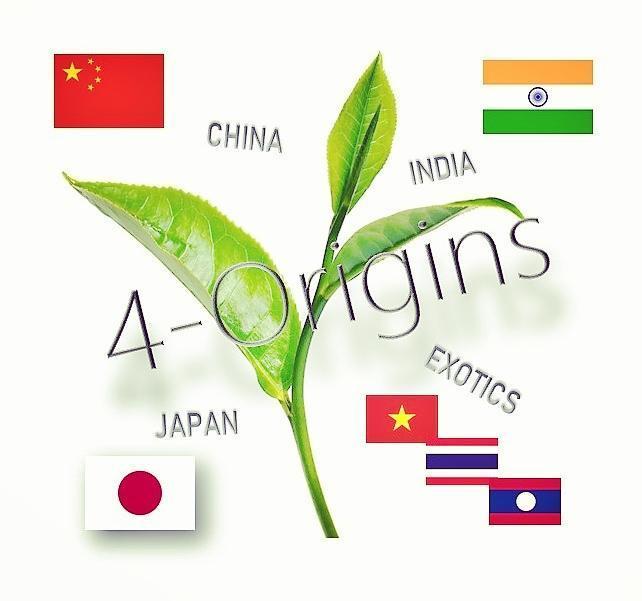 """4-Origins"" Advent-Aktion im Siam Tee Shop"