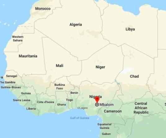 Au moins 16 personnes ont été tuées après une attaque contre une église au Nigeria
